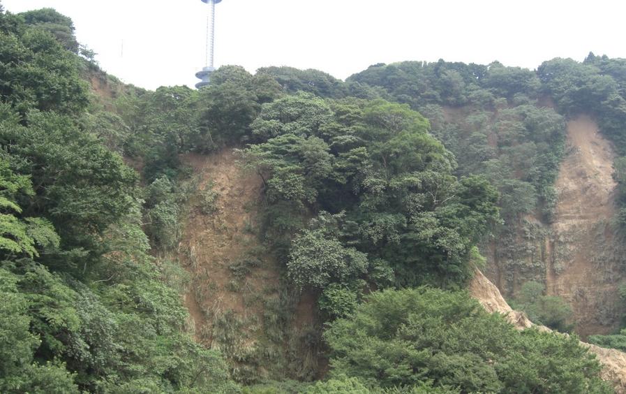 静岡市清水区の自然斜面の崩落